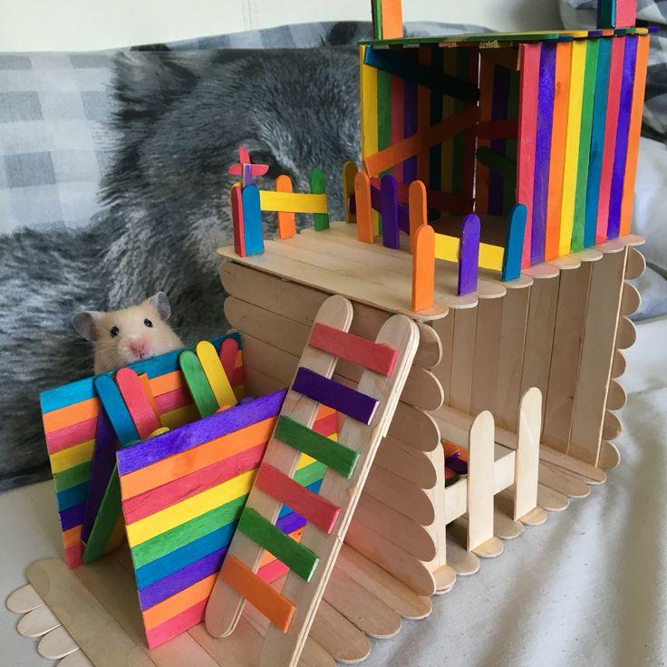 Hamster toy DIY