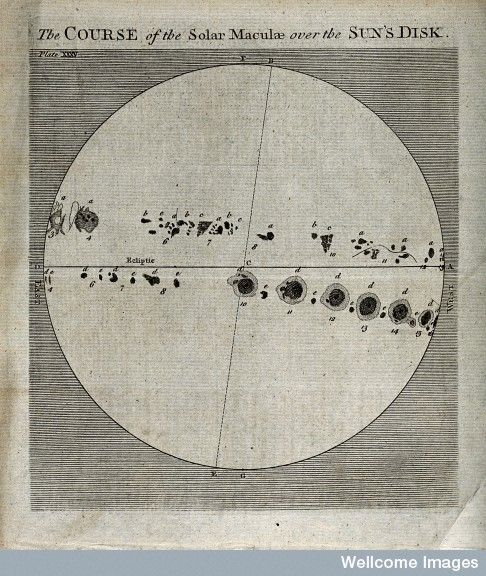 Astronomy: the sun, showing the progress of sunspot activity