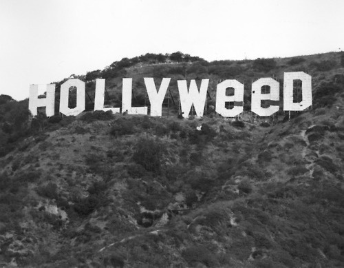 WeeD: Hollywood Signs, California, Viaduct, Weed, Pranks, Wonder Places, Poster, Vintage Photo, Art Projects
