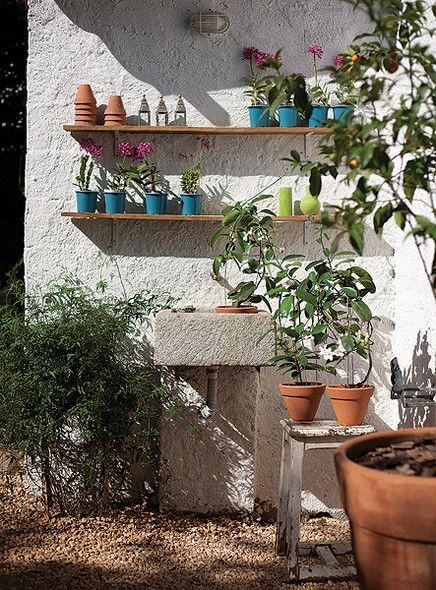 A paisagista Mônica Lauretti transformou a área de 4 m² de um jardim num cantinho cheio de charme. Prateleiras foram instaladas para aprovei...