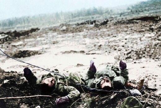 Gefallene Soldaten bei Postawy, Polen, im März 1916. (© picture-alliance/akg)