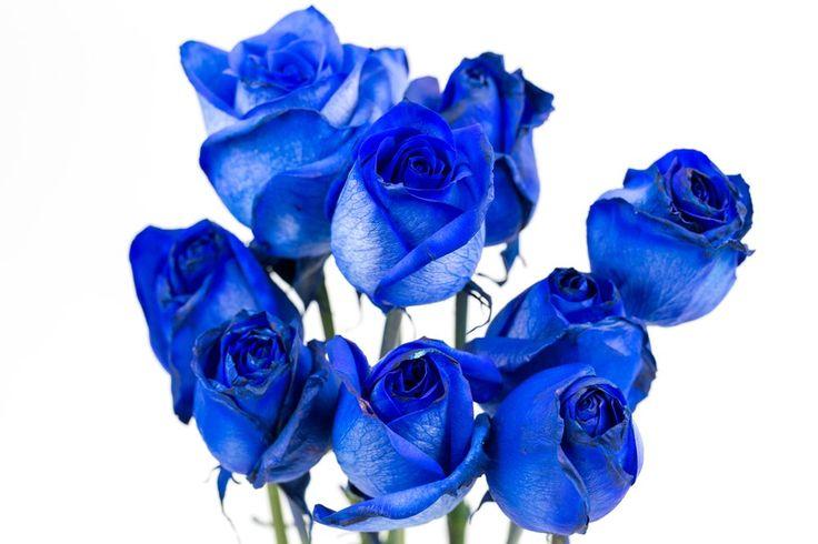 Næsten magi: Sådan farver du roser