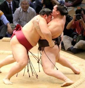 遠藤、白鵬を破り金星!一気に寄り切り完勝、全勝は鶴竜のみ、綱取りの豪栄道は玉鷲に痛恨の1敗 #相撲