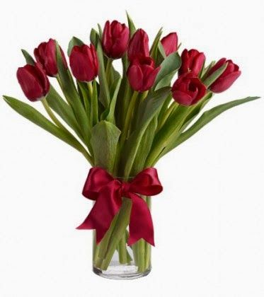 Red tulips! Love them