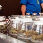 Armata Italiei va cultiva marijuana. Care este motivul