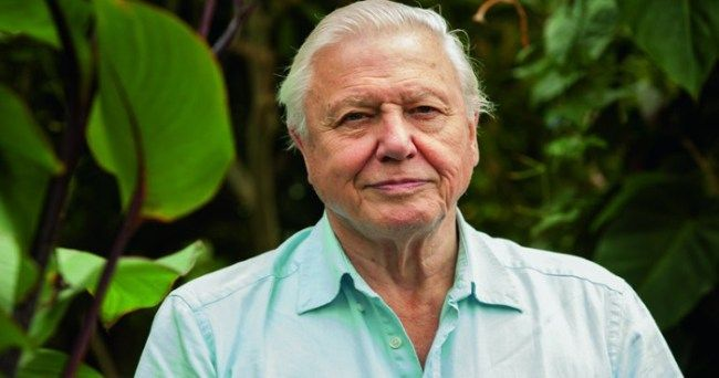 Sir David Attenborough Says He Wants To Shoot Donald Trump Dead :http://gossfeed.com/2016/11/21/david-attenborough-shoot-donald-trump/