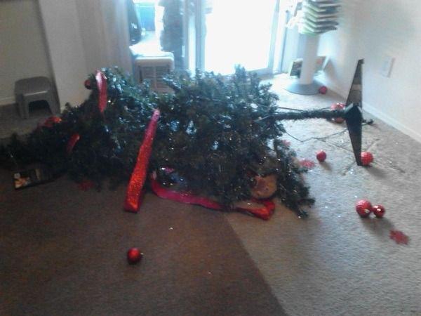23 Funny Christmas Tree Fails