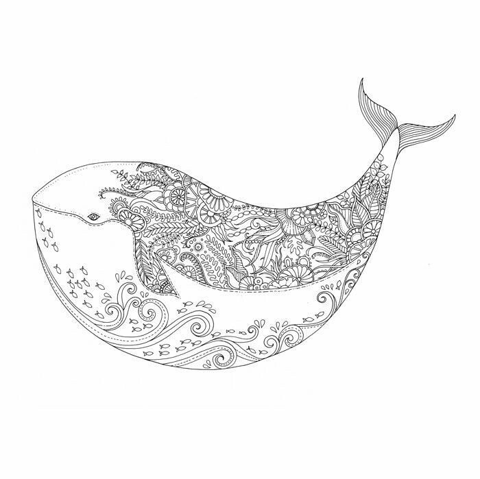 Adult Coloring Books Colouring Pages Penguin Random House Whales Johanna Basford Happy Things Lost