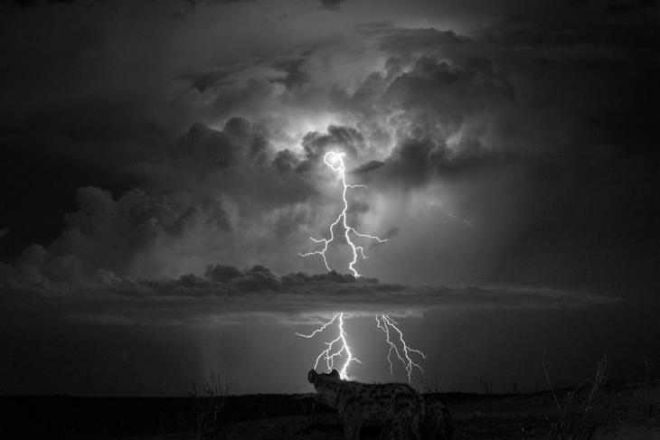 ברק משתקף בלילה בתוך מים