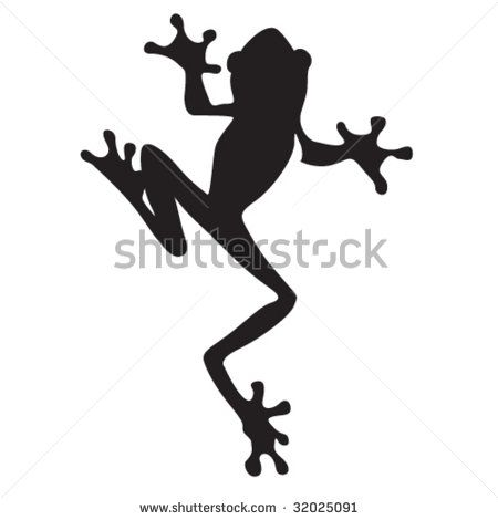 Vector frog silhouette on the white background