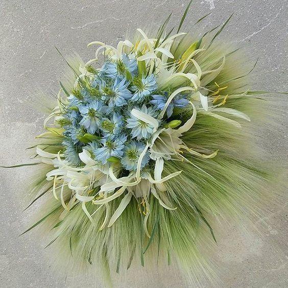 Les 25 meilleures id es de la cat gorie promesses de fleurs sur pinterest b - Idee de bouquet de fleurs ...