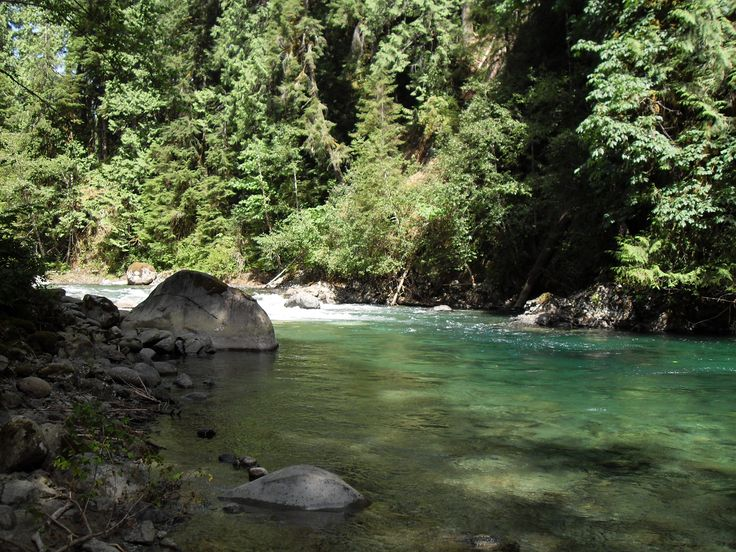 121 best images about mission bc maple ridge langley for Chehalis river fishing