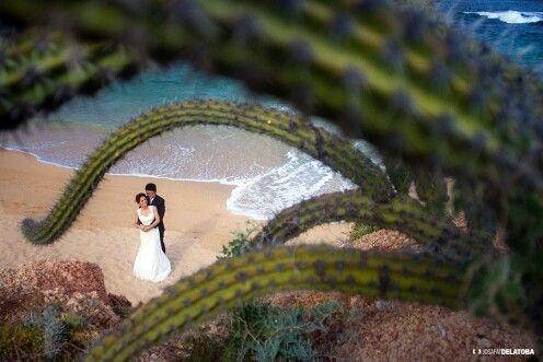 Trash the dress with an beautiful couple #cabophotographer #caboweddingphotographer #josafatdelatoba #cabosanlucas #beauty #beach #weddings #weddingsinloscabos #trashthedress
