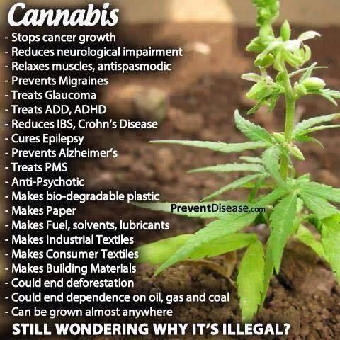 Cannabis list of benifitsPic.jpg