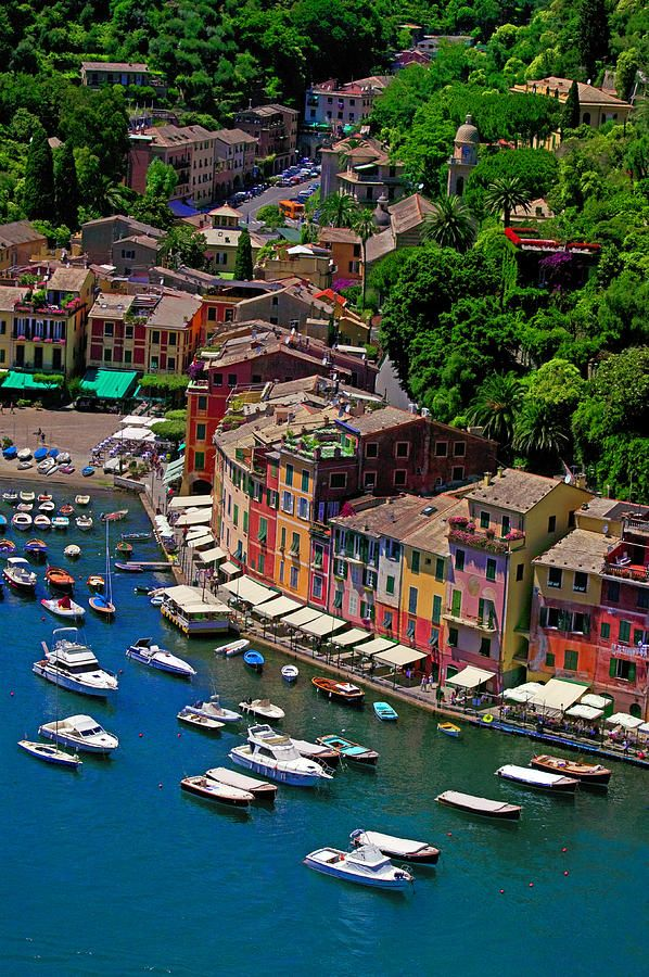 ✯Harbor - Portofino, Italy - Beautiful Pic