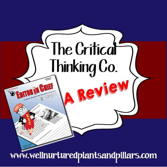 Critical thinking company editor in chief reviews