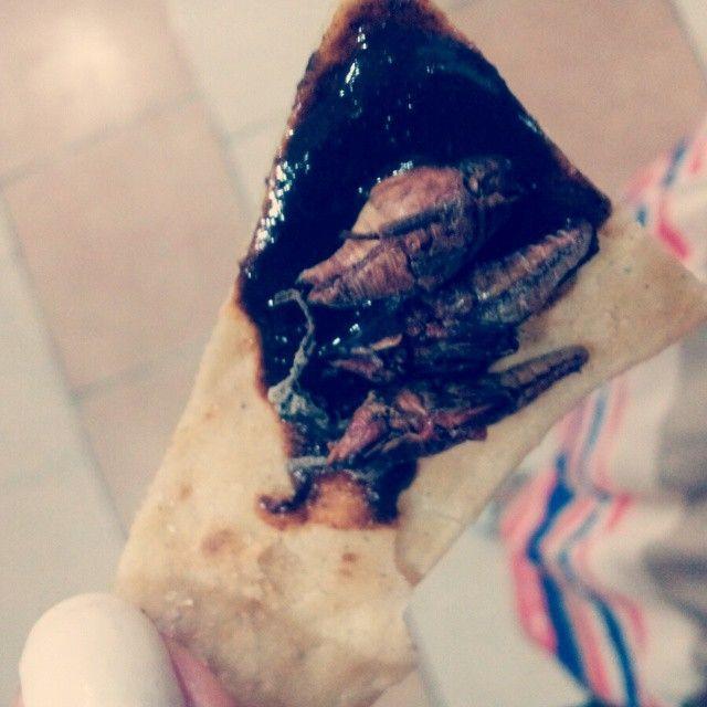 Chapulines con mole!! :) #food #mexicanflavor #mexicanfood #chapulines #mole #delicioso #colores #tradición #deliciasculinarias #sabor #mexico #oaxaca #delicious #spicy #elsabordemipueblo by @lawdoritomorgan