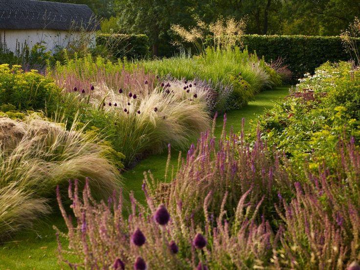 449 best images about gramineus on pinterest gardens for Ornamental prairie grass
