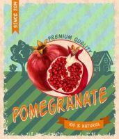 retro grunge pomegranate poster vector