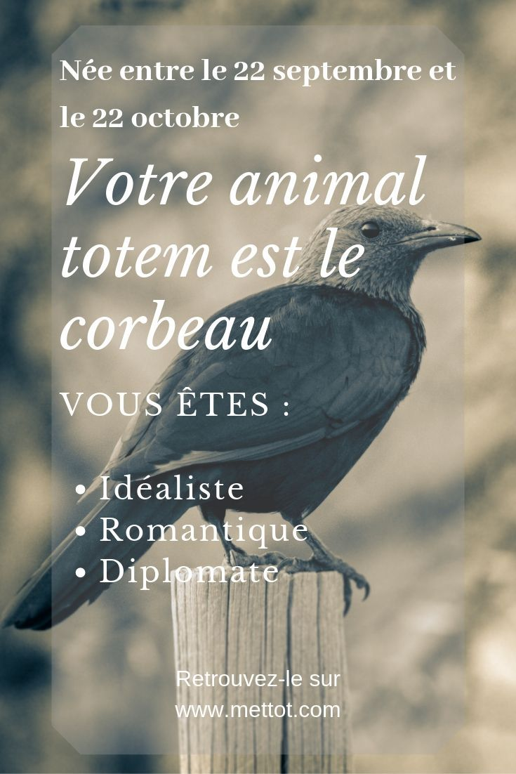 Animal Totem Corbeau 22 Septembre 22 Octobre Animaux