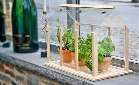 Mit diesem Mini-Treibhaus könnt ihr in eurer Wohnung optimal Kräuter züchten. Und in unserem DIY siehst du, wie du dieses Gewächshaus selbst bauen kannst.