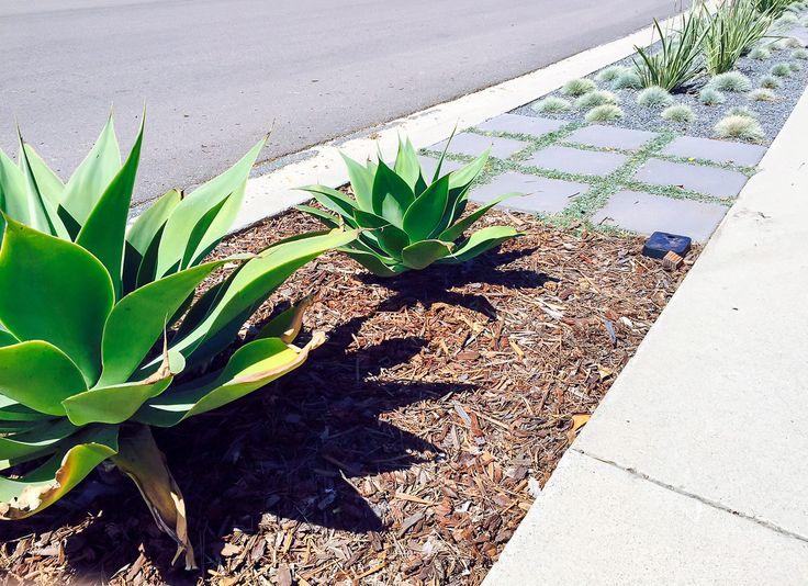 Best 25 Sidewalk Landscaping Ideas On Pinterest Yard