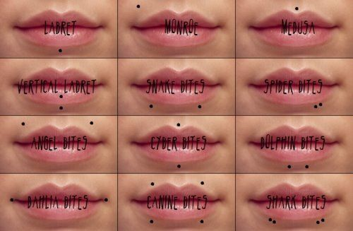 Different types of lip piercings. | Piercings | Pinterest ...