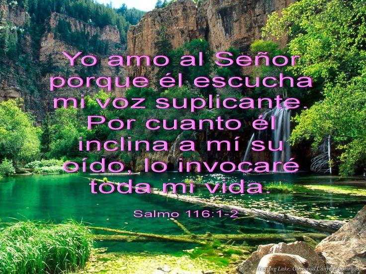 Biblia, paisajes y maravillas: Salmo 116:1-2
