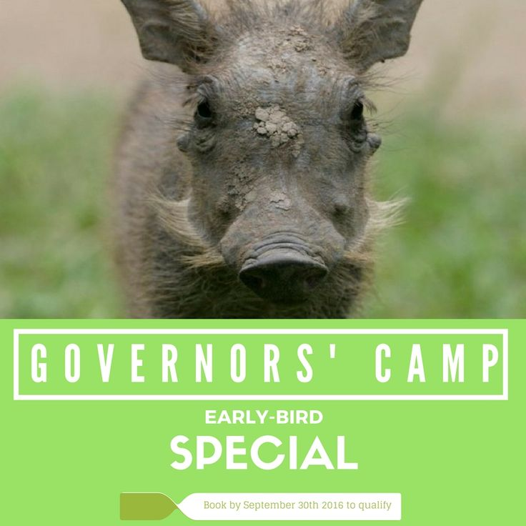 Governors' Camps Early Bird Special 5 Nights Package to Loldia House & Little Governors' Camp Book & pay before September 30th 2016 to qualify for these rates