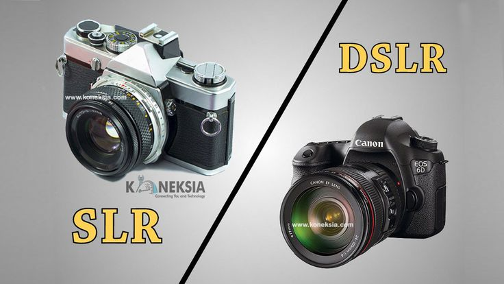 Perbedaan Kamera DSLR dengan Kamera SLR. Kelebihan kekurangan Kamera Digital DSLR dan SLR. Arti kepanjangan dari DSLR dan SLR. Lebih bagus DSLR atau SLR?