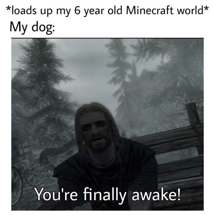 85 Funny Minecraft Memes Celebrating 10 Years Of Gaming Goodness In 2021 Memes Minecraft Memes Gaming Memes