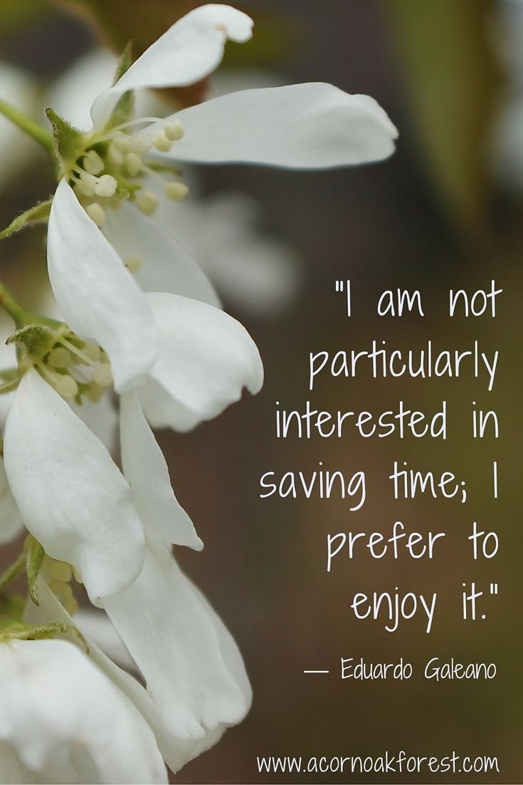 """""""I am not particularly interested in saving time. I prefer to enjoy it."""" ~ Eduardo Galeano - How do you think about time? Always stressed and under a deadline, living in the present, bored with too much time... it pays to take a break now and again to consider how we think about time.  