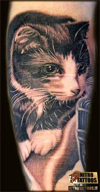 tatuaggi gatto nero