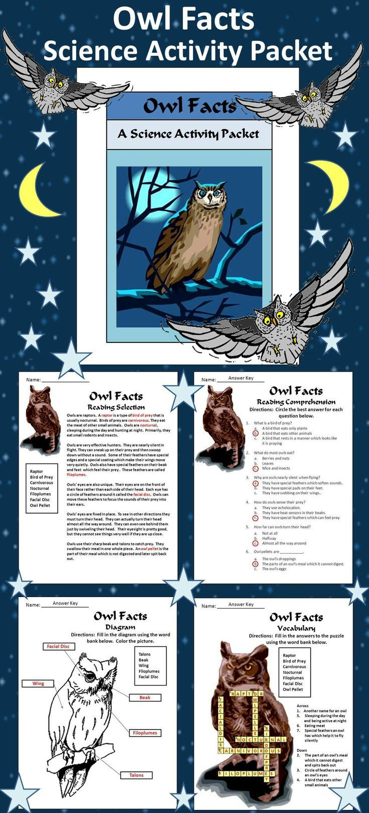 Owls Activities: Owl Facts Science Activity Packet Bundle                                                                                                                                                                                 More