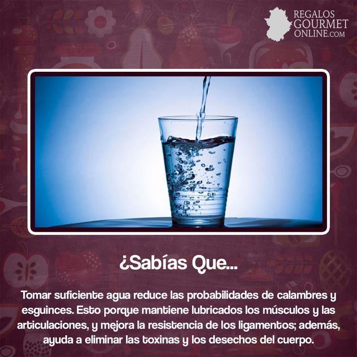 ¿#SabíasQue Tomar suficiente agua reduce las probabilidades de calambres y esguinces? #Curiosidades #Gastronomía