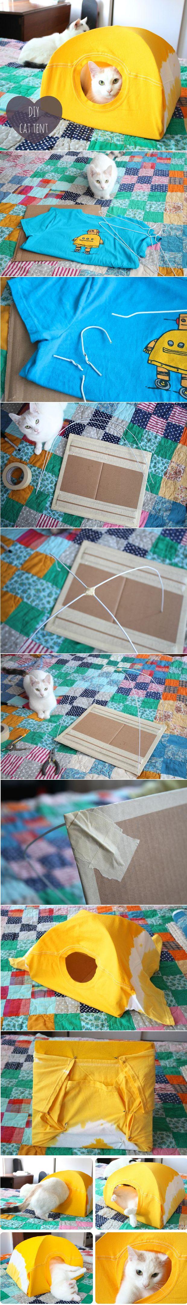Tente pour chat en carton et tee-shirt