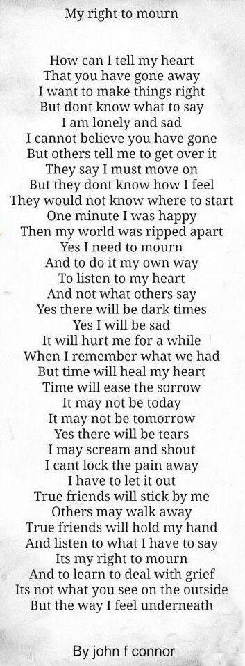Perfect explanation of grief. Have to do it my way! Yes its been over a year but it feels like just yesterday I got the news you were gone!