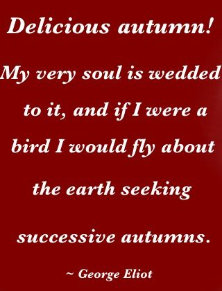 Image result for autumn beauty quotes