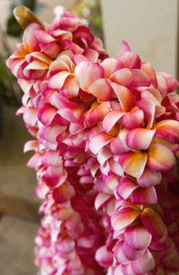 Plumeria leis...are a must, at least for the ladies