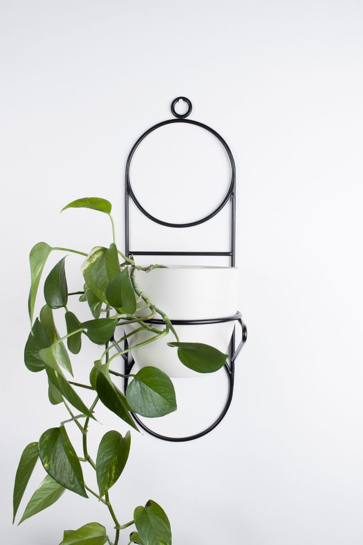 NABU  hanging plant stand | COSMO collection | BUJNIE | Beautiful and functional plant stands. #plants #plantstand #hangingplantstand #plantsarefriends #cosmo #bujnie #hanging #jungle #botanical #floral #design #product