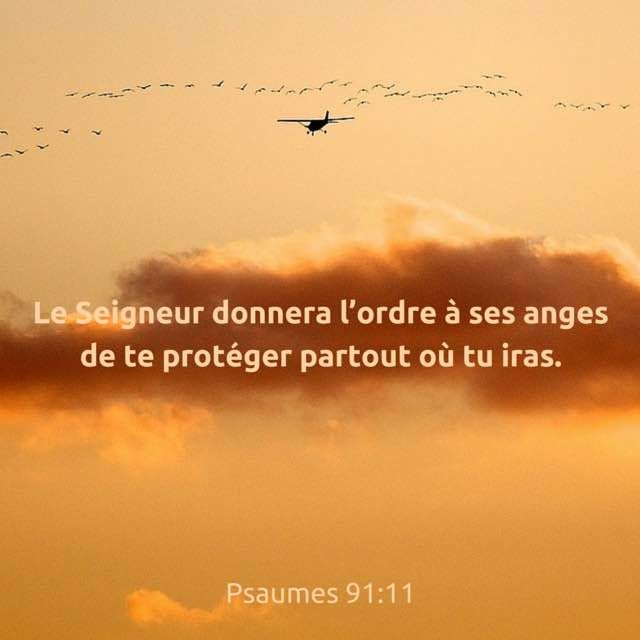 Psaumes 91 :  11.