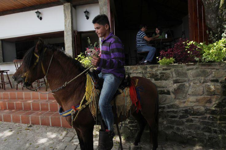 Posada Galipan con paseo a caballo.dentro del parque nacional Avila.Foto Angel Obertein