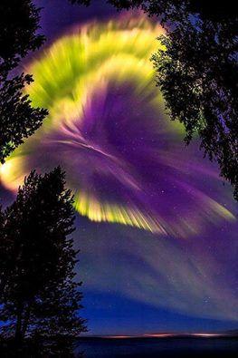Kuzey ışıkları üzerinde gökte murmansk bölgesi, Rusya.