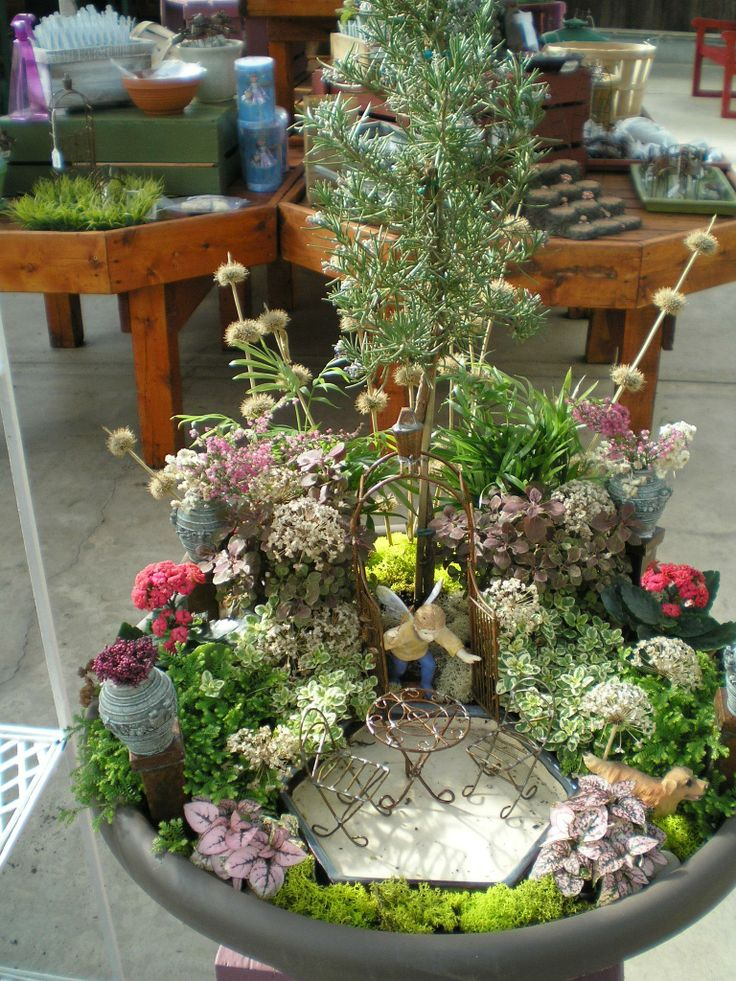 663 best images about fairy gardens on pinterest beach. Black Bedroom Furniture Sets. Home Design Ideas