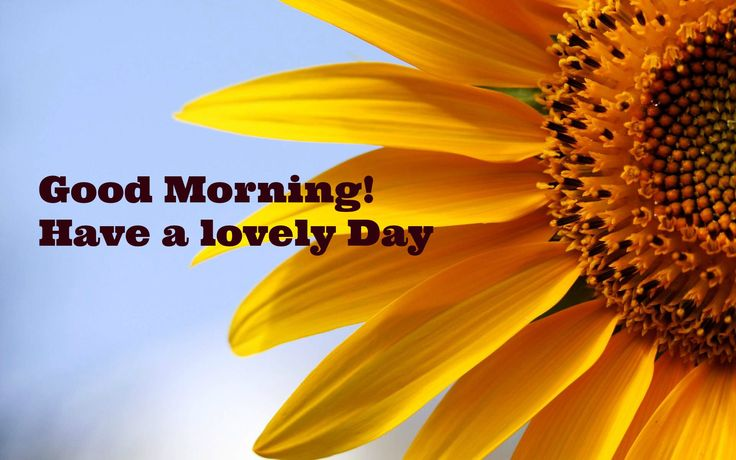 Good Morning Tuesday Bible Quotes - Yahoo Image Search Results