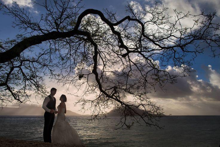 Wedding on Fitzroy Island Australia