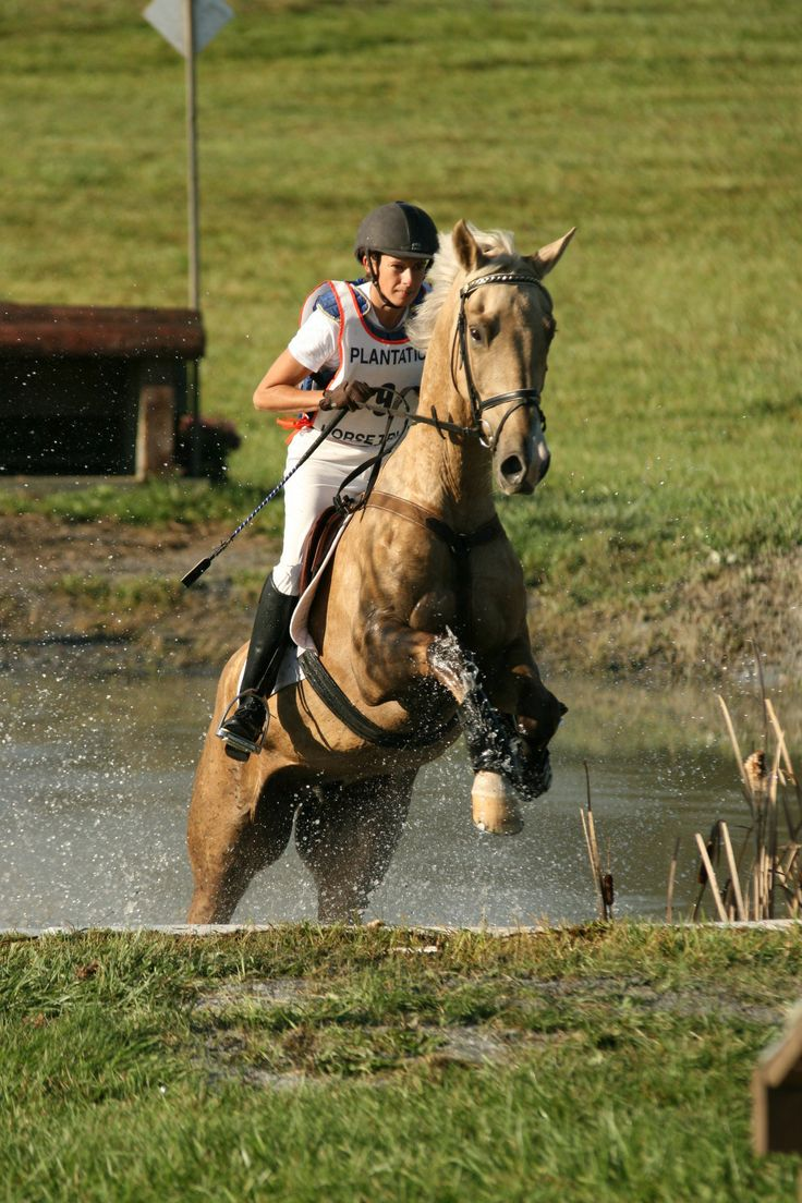 Horses jumping cross country - photo#46