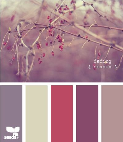 Fading Season, possible color schemeColors Pallets, Design Seeds, Room Colors, Living Room, Colors Schemes For Girls Room, Colors Palettes, Colors Combinations, Purple And Red Colors Schemes, Fade Seasons