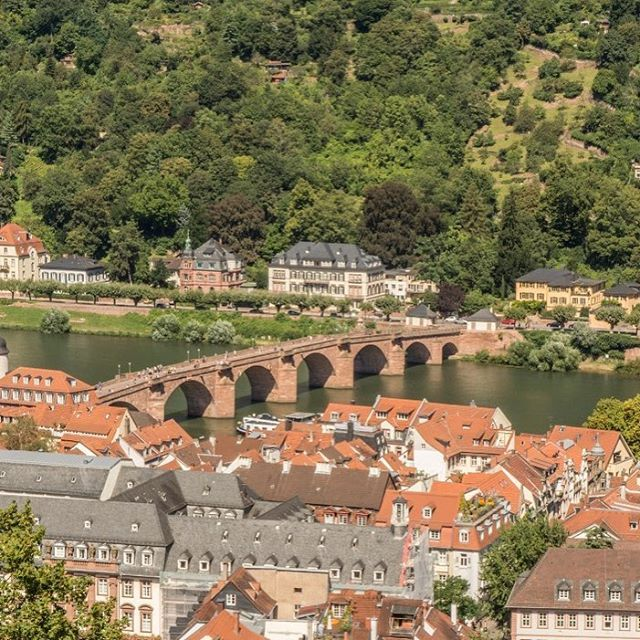 'A view of the beautiful town of #Heidelberg, as seen from the castle. Such pretty towns make me long for days when I can be location independent, live for a few months each in such locations and then on my way again. Sigh! #heidelbergcity #heidelbergcastle #heidelberggermany . . . . #nikonphotographer #travel #travelblogger #instatravel #travelgram #travelphotography #mytravelgram #mytinyatlas #wanderlust #doyoutravel #nofilter #throwback #travelgoals' by @aparna_agg. What do you think…