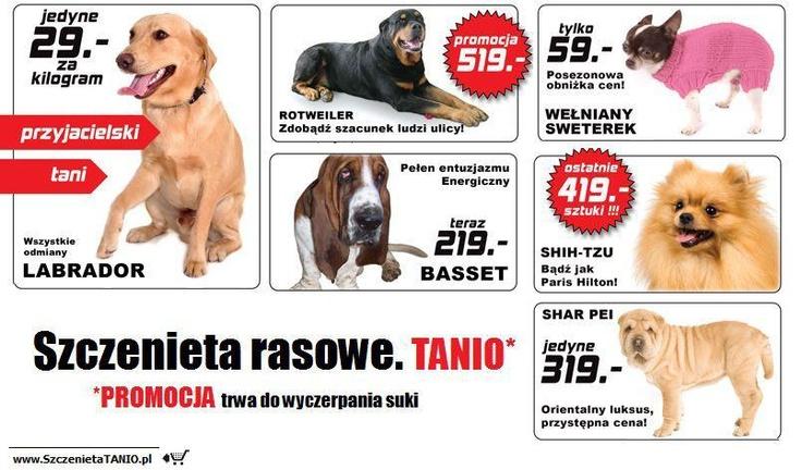 gazetka wyprzedażowa / str. 1